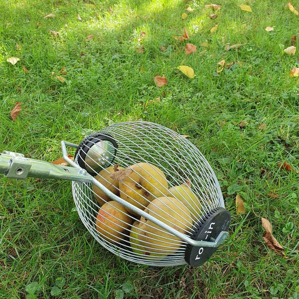 Woll-In Medium für Äpfel